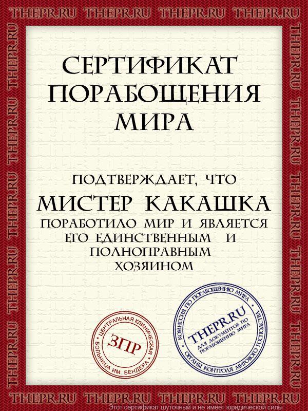 cert-mister_kakashka459343.jpg